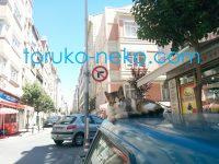トルコイスタンブールで車の上でウトウトしている三毛猫が落ちそうな画像
