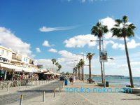 南キプロスの観光スポット、パフォスとは?