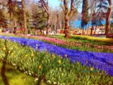 Emirgan park チューリップで有名なトルコのエミルギャンパーク(EMİRGÂN PARKI)とは?