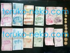 トルコリラ紙幣・お札・硬貨に関する情報